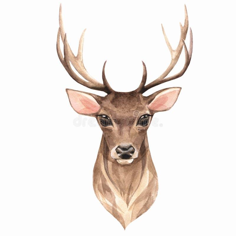 高尚的鹿 水彩例证1 向量例证