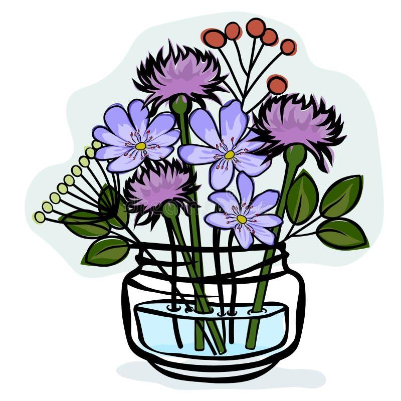 高尚的hepatica和紫苑在一个玻璃瓶子 o 向量例证
