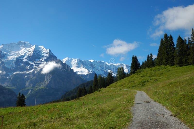 高山供徒步旅行的小道 免版税图库摄影