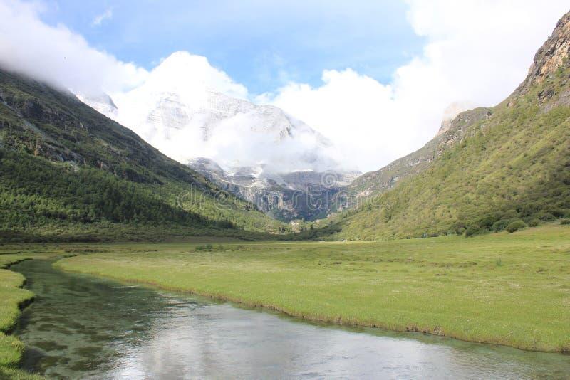 高山冰川和草原 图库摄影