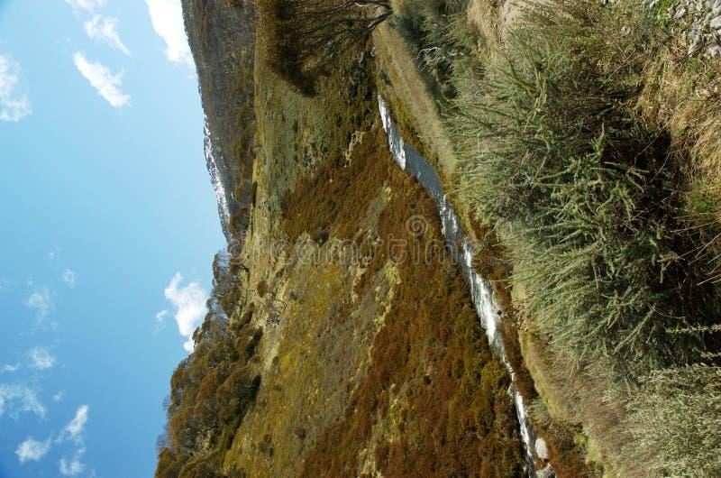 Download 高山原野 库存图片. 图片 包括有 结构树, 天空, 岩石, 空白, 干净, 来源, 户外, 高涨, 小山, 级联 - 345875