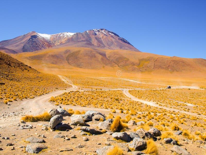 高山和典型的草丛在山脉de Lipez,安地斯山的Altiplano,玻利维亚,南美 库存照片