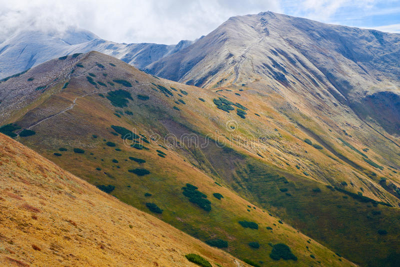 高山在欧洲。Tatras,波兰。生态蜜饯。 免版税库存照片