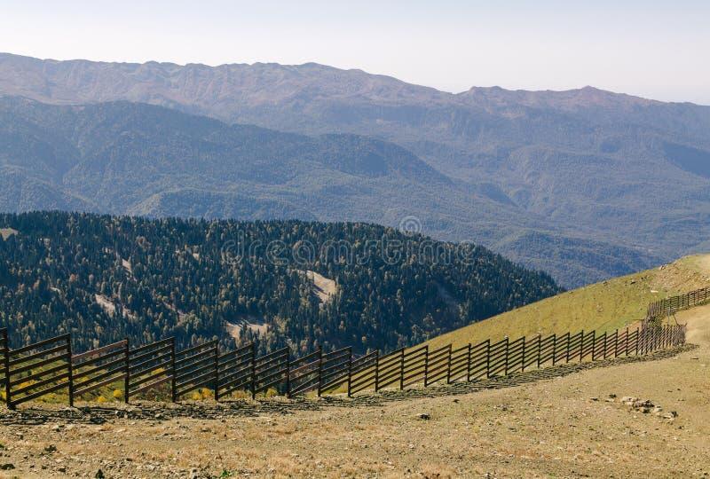 高山峰顶  明亮的天太阳在山秋天森林里 库存图片