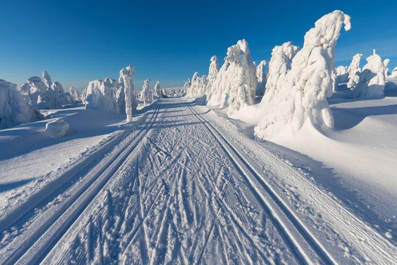 高山手段滑雪 速度滑雪轨道或足迹 晴朗的日 背景圣诞节关闭红色时间 庆祝新年好 库存图片