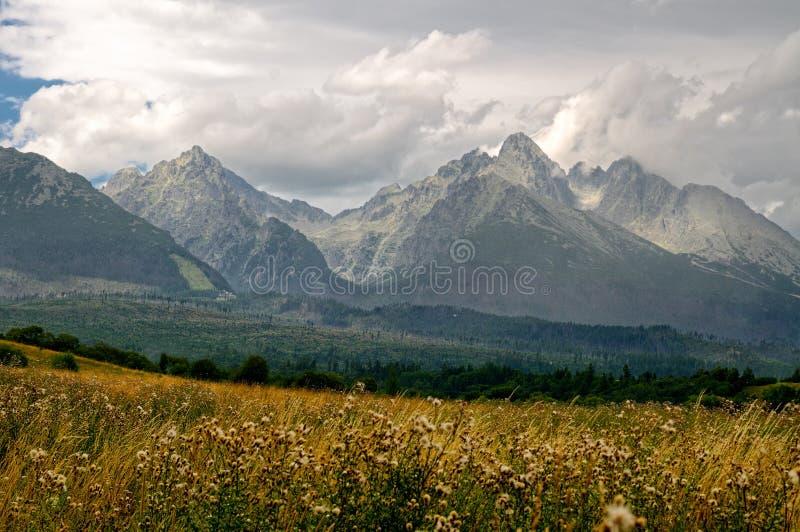 高山斯洛伐克tatra 免版税库存图片