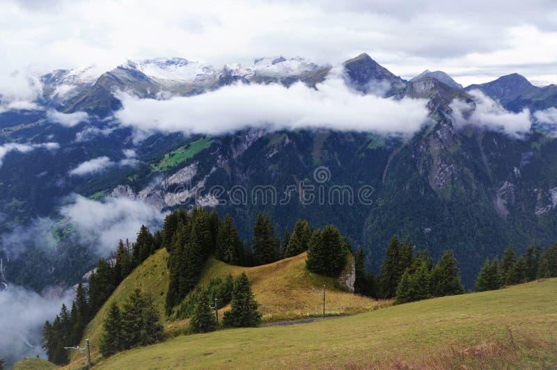 高山森林、湖布里恩茨,山脉和薄雾惊人的看法在Schynige普拉特,瑞士 一部分的 免版税图库摄影