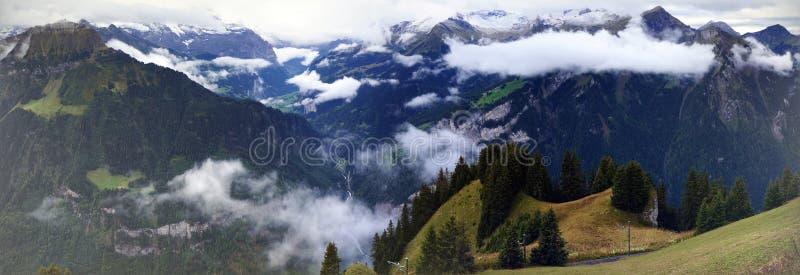 高山森林、湖布里恩茨,山脉和薄雾惊人的看法在Schynige普拉特,瑞士 一部分的 库存图片
