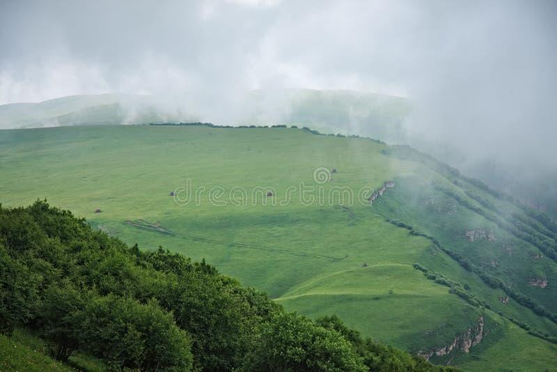 高山浮动的雾草甸 库存照片