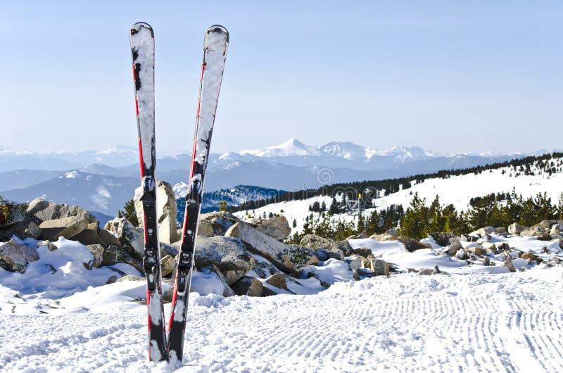 高山滑雪 免版税库存照片