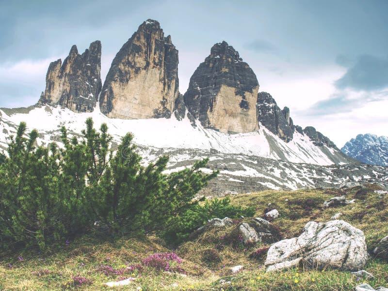 高山特雷Cime di Lavaredo断层块巨大看法  库存照片