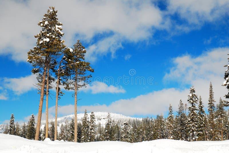 高山脉冬天 免版税库存照片
