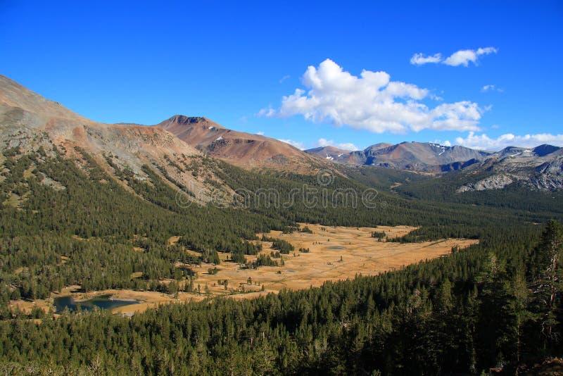 高山脉概览 库存图片