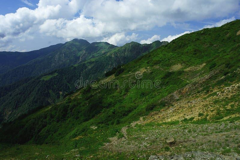 高山草甸和山在薄雾蓝色与美好的夏天环境美化 免版税库存照片