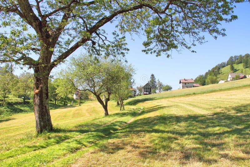 高山草甸和村庄在托尔明,斯洛文尼亚附近 库存照片