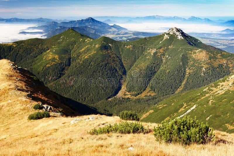 高山西方斯洛伐克的tatra 库存图片