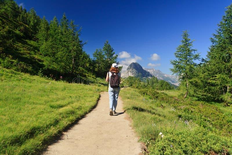 高山远足者路径 免版税图库摄影