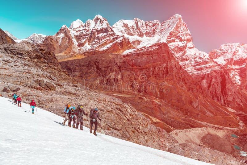 高山登山人合作继续前进冰川高山阳光背景 免版税库存图片