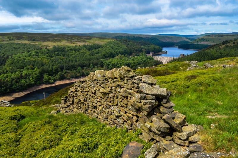 高峰区的美丽的石块墙沿Derwent的渐近,高峰区国家公园 免版税图库摄影
