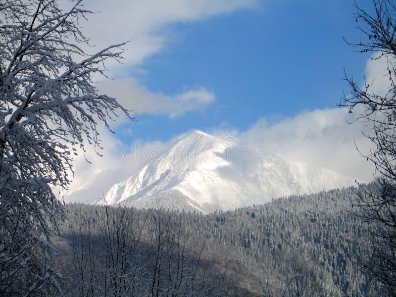 高峰雪 免版税库存图片