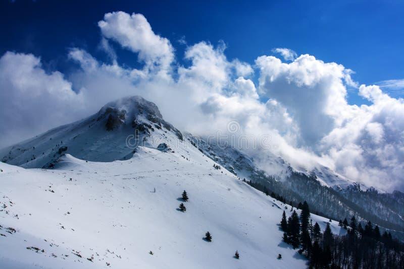 高峰Yumruka, Stara planina山 免版税图库摄影