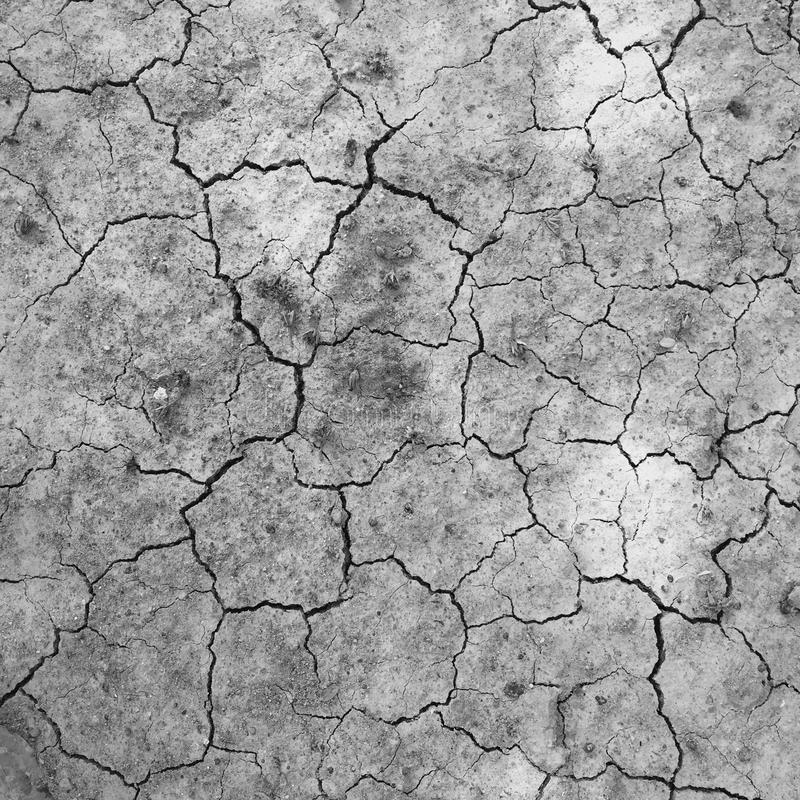 高明的土壤干燥和 库存图片