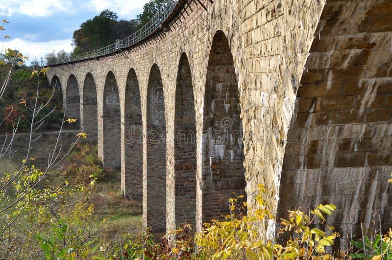 高架桥是乌克兰Terebovlya附近Plebanivka村一座9拱的铁路桥 库存图片