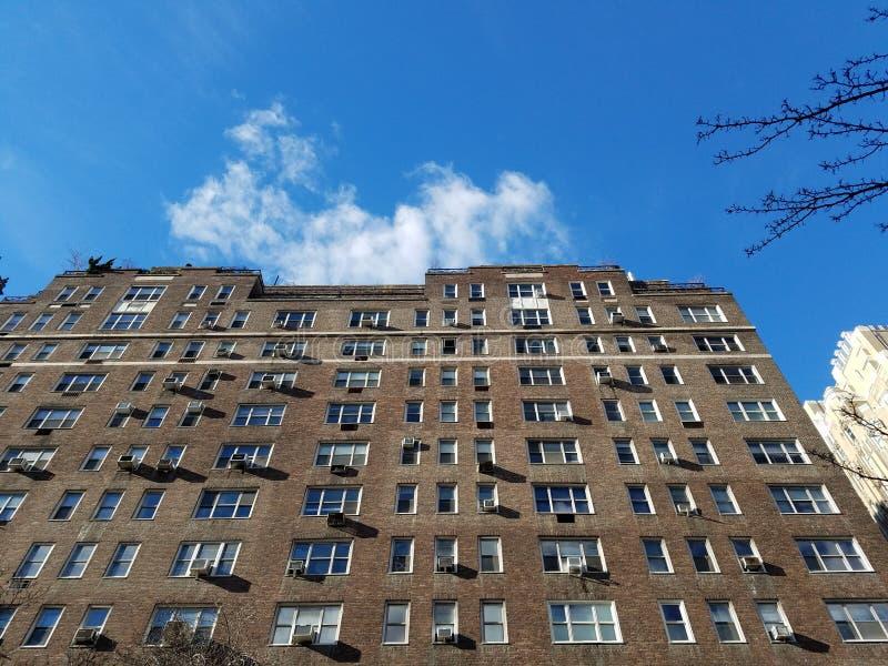 高楼在充分的阳光下在中间地区 免版税库存图片
