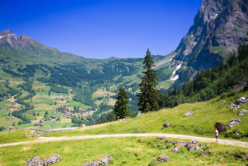 高涨在瑞士附近的grindelwald 图库摄影