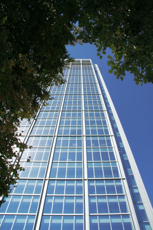 高现代办公楼如被看见从蚂蚁水平 库存图片