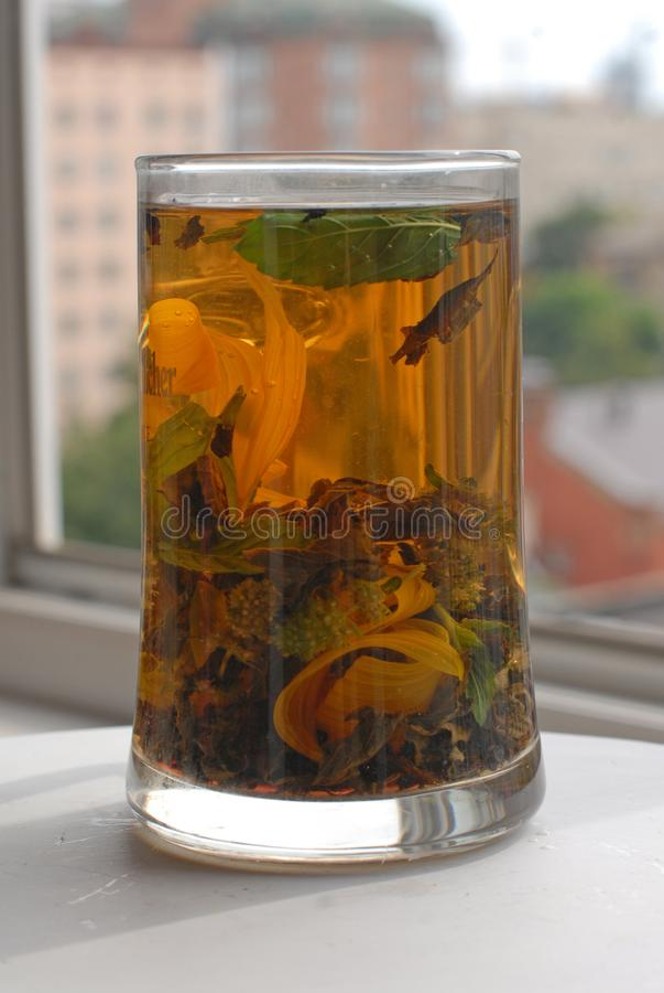 高玻璃杯子用芳香清凉茶 库存图片