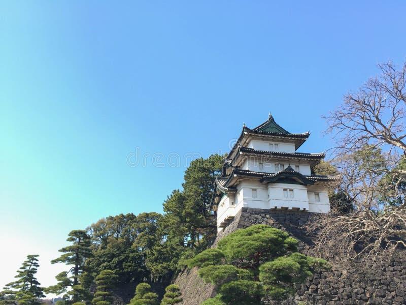 高知,日本- 2015年3月26日:高知城堡全视图  图库摄影