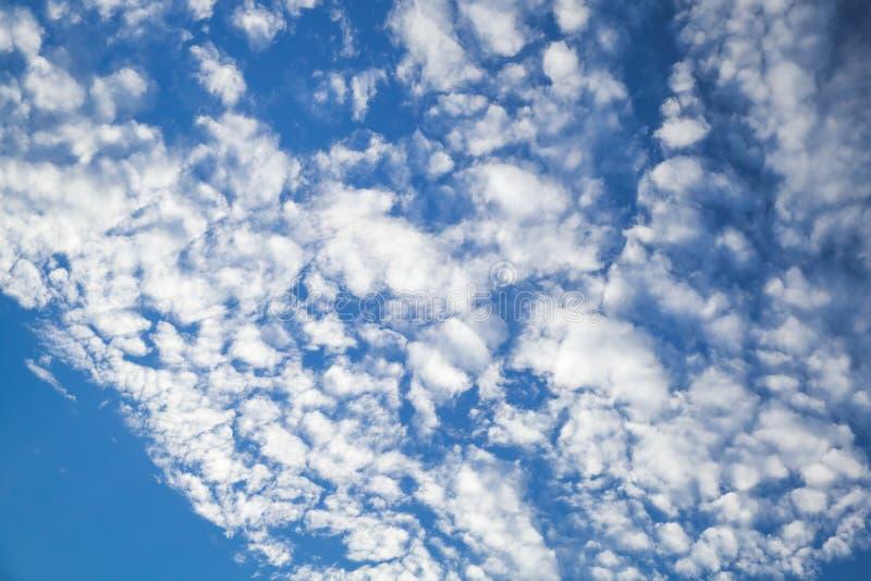 高积云,云彩在天空蔚蓝纹理分层堆积 免版税库存照片