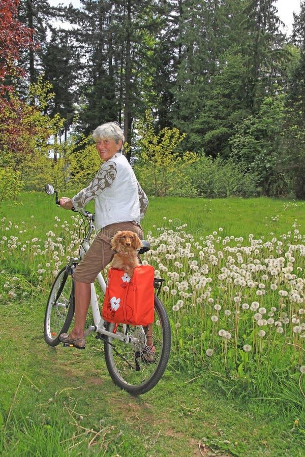 高级夫人骑自行车者 库存照片