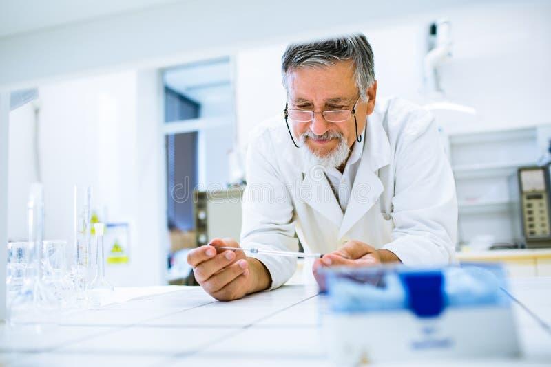 高级男性研究员执行的科学研究对实验室 免版税图库摄影