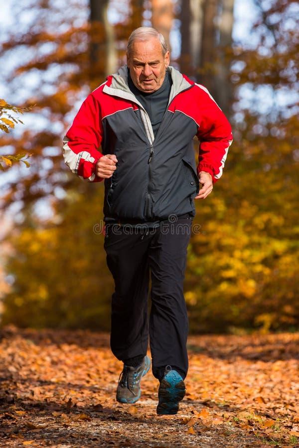 高级运行中在森林里在秋天 免版税图库摄影