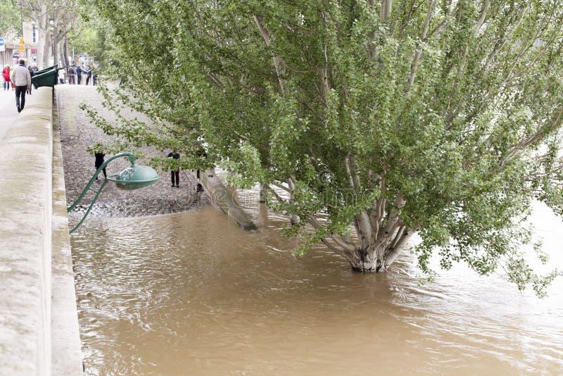 Download 高级水在塞纳河 编辑类照片. 图片 包括有 沼泽, 巴黎, 法国, 火箭筒, 危险等级, 级别, 灾害, 溢出 - 72358766
