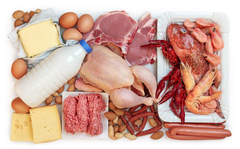 高蛋白的动物性食品 库存照片