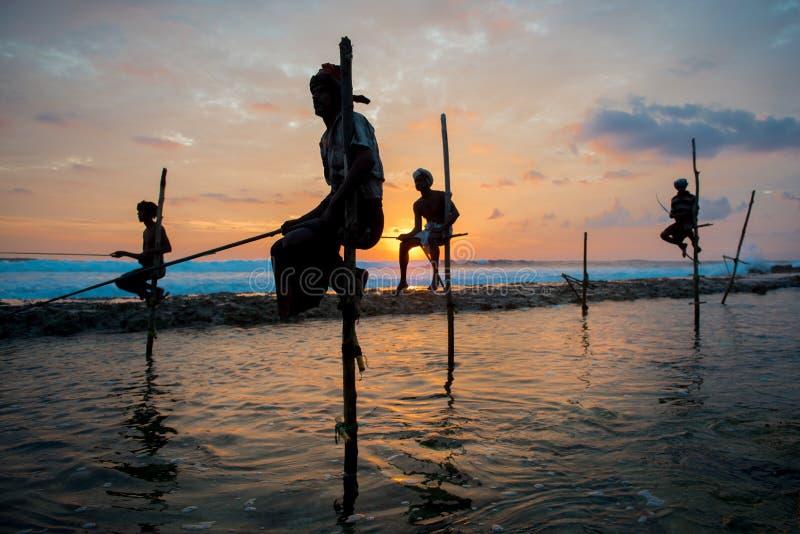 高跷渔夫在Koggala,斯里兰卡 免版税库存图片