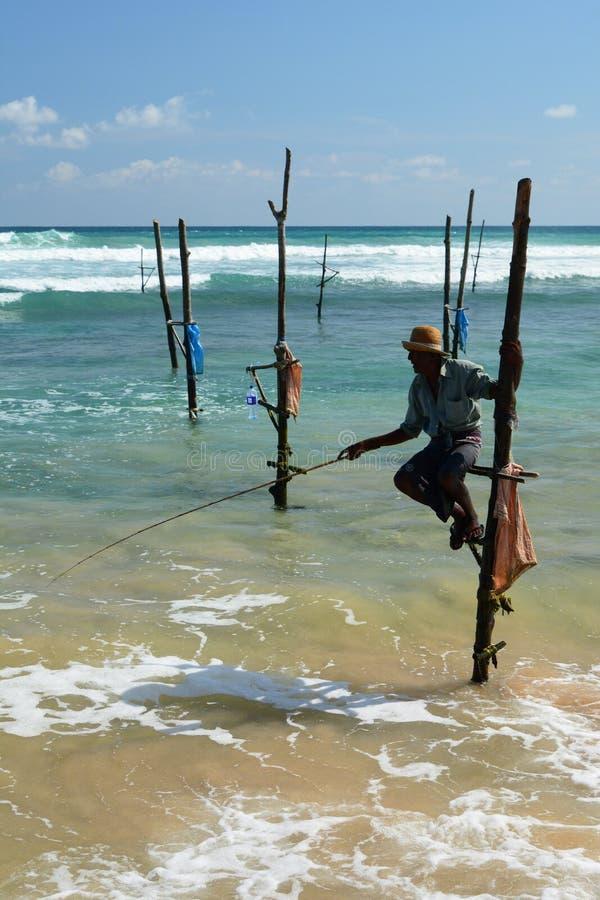 高跷渔夫 Weligama 斯里南卡 免版税图库摄影