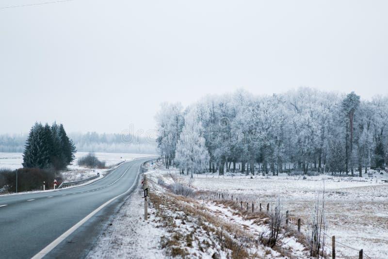 高速公路在冬天 免版税库存图片