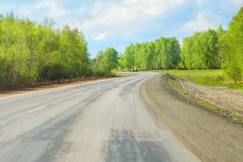 高速公路木头天空 库存照片