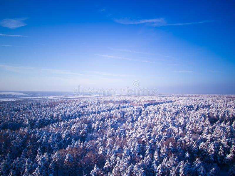 高速公路通过在路和河的冬天森林鸟瞰图背景的 蓝天 免版税库存照片