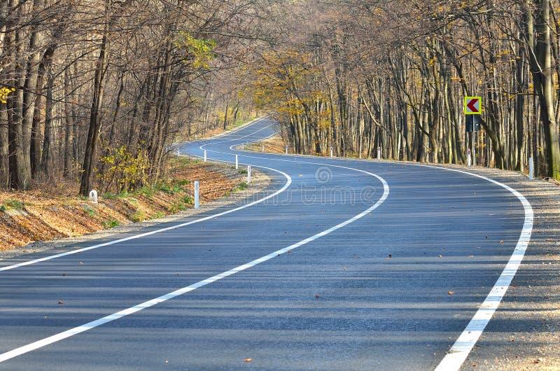 高速公路通过森林 图库摄影
