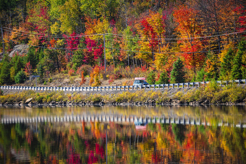 高速公路通过秋天森林 图库摄影
