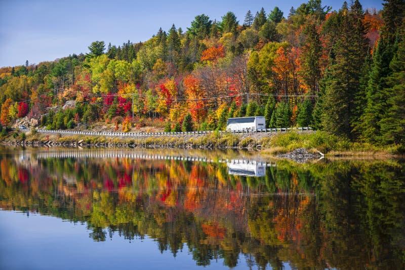 高速公路通过秋天森林 库存照片