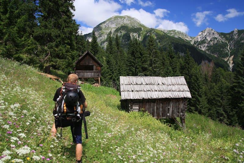 高阿尔卑斯的grintovica 免版税库存图片