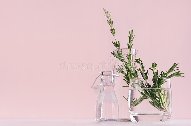 高雅家庭装饰-芬芳在玻璃花瓶和减速火箭的瓶的花束新鲜的迷迭香在白色桌和时尚桃红色背景上 库存图片
