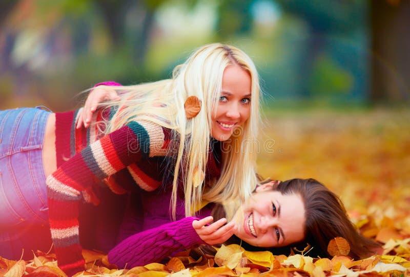 高兴女孩,朋友获得在下落的叶子中的乐趣在秋天公园 免版税库存图片
