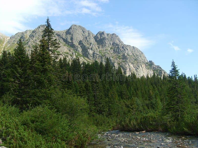 高Tatras在斯洛伐克-一个晴天 库存图片